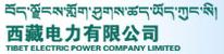 名称:西藏电力有限公司 描述:西藏电力有限公司
